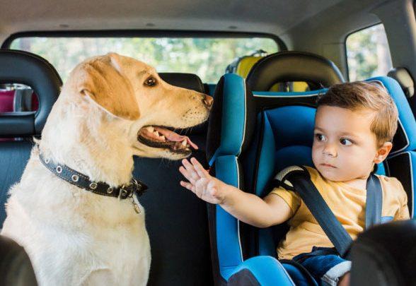 В Украине изменились правила перевозки детей в автомобиле
